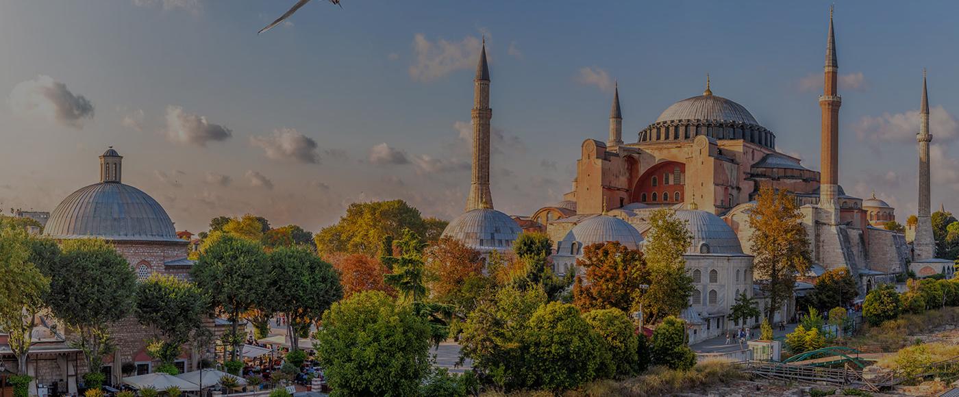 TURKI BUY ONE GET ONE